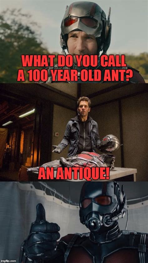 21 Hilarious Ant-Man And The Wasp Memes That Will Make You