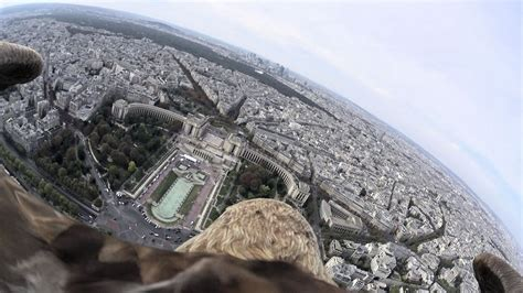 Flying eagle point of view #4 by Sony Action Cam Mini (A