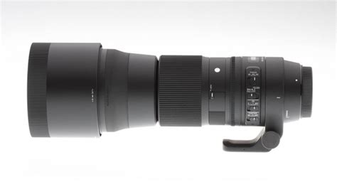 Sigma 150-600mm Contemporary Lens Review: The best bang